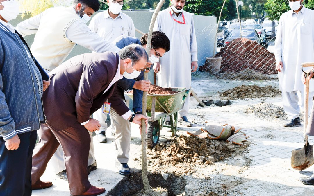 "Shifa Tree Plantation Drive Under Prime Minister's ""Clean Green Pakistan Campaign"""