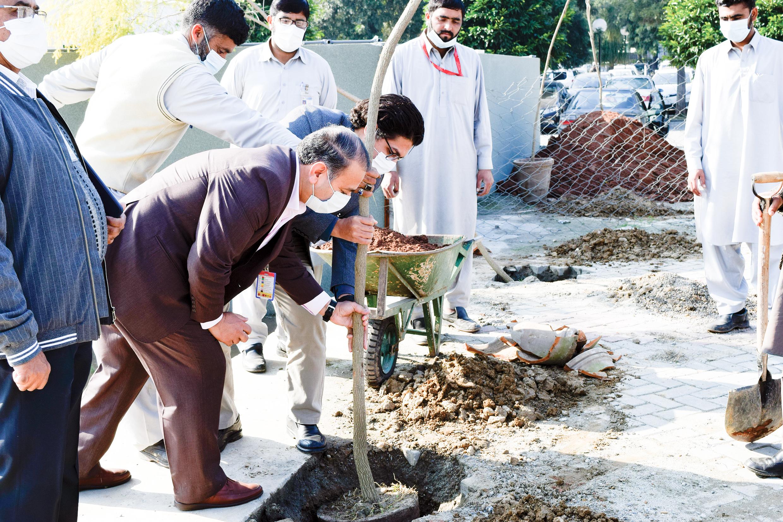 Shifa Tree Plantation Drive-min